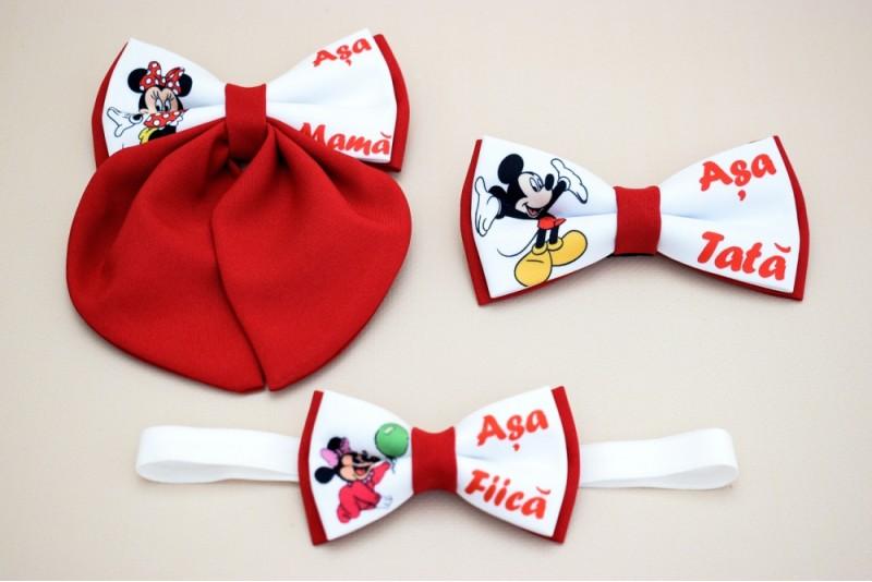 Papioane Familie Mickey si Minnie