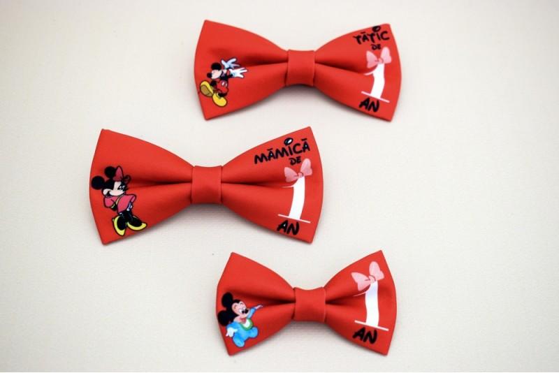Set 3 Papioane Mickey si Minnie